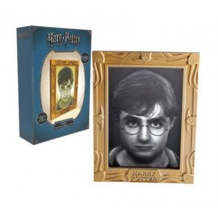 Harry Potter Halopane Mood Lamp NEW !
